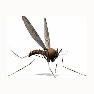 annual mosquito control pittsburgh